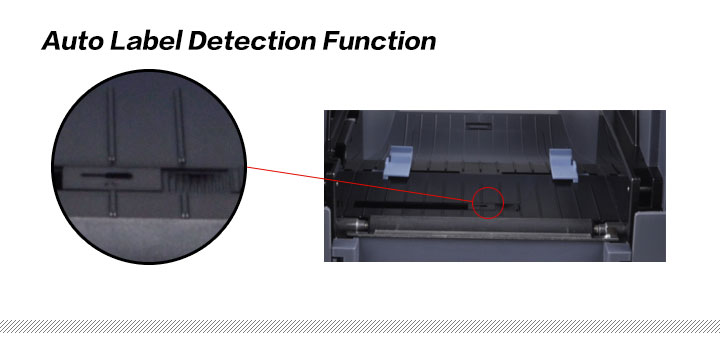 Auto Label Detection Function